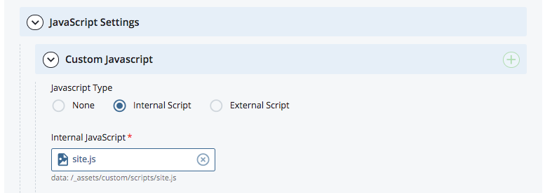 selecting the Internal Script in the site settings in Cascade
